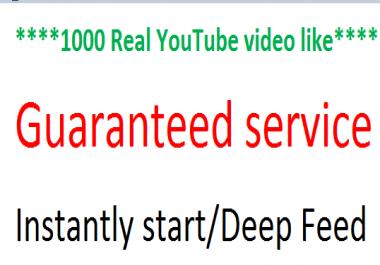 Lifetime Guaranteed 1000 Real YouTube video like