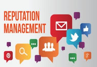 Guide You Regarding Your Reputation Management Queries