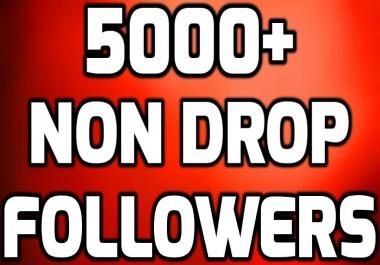 Get Super Instant 5000+ Non Drop Profile Followers
