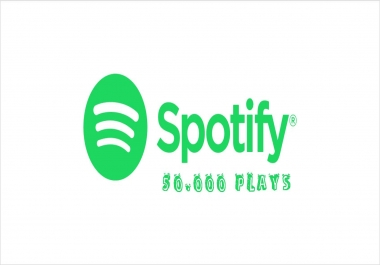 50.000 Spotify Premium Plays On Your Song for $125