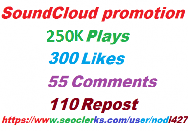 250K PLAYS 300 LIKES, 110 REPOSTS, 55 COMMENTS