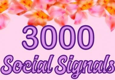 build 3000 social signals