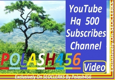 Give you 500 Channel Subscriber 1/2 Day completed