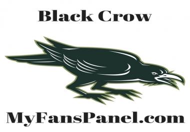 Beautiful Logo & Web Banner Design