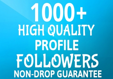 Add Fast 1000+ Profile Followers NON DROP and High Quality