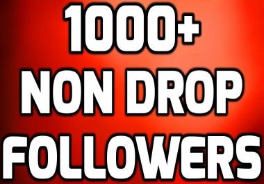 Add 1000+ Instant HQ Permanent Followers