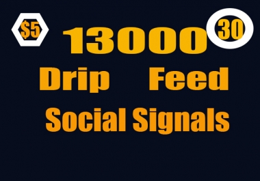 13000 Drip Feed Website Mixed seo social signals in 30 days