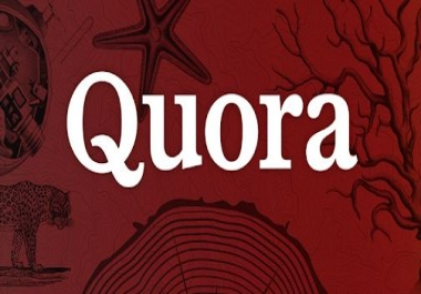Offer guaranteed my 15 quora answer your website Rank Google 1st page