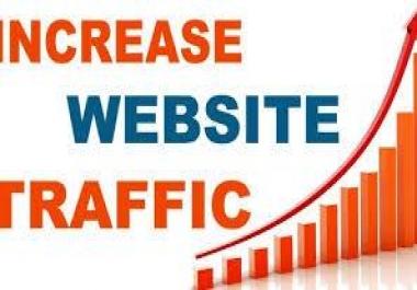 Real WW Traffic Google Organic