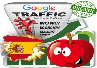 Spanish Search Traffic from Google.es for 30 days