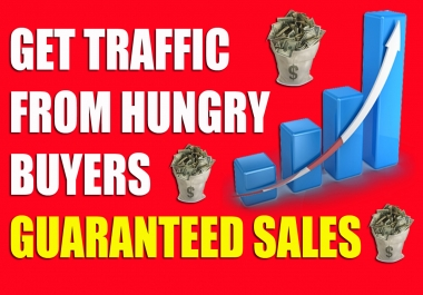 Drive 180,000 WEB TRAFFIC to you website or blog