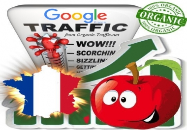 French Search Traffic from Google.fr for 30 days