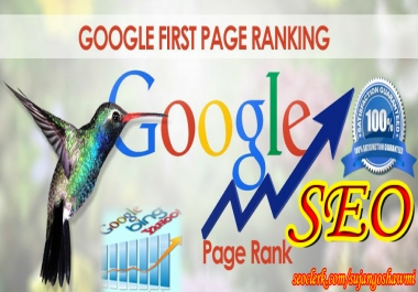 Guaranteed Google 1st page Rank Service your site