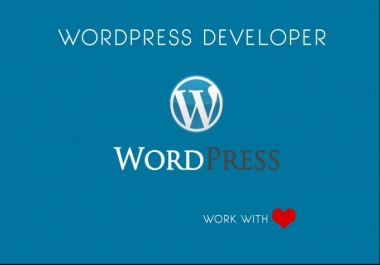 Instant premium customize your wordpress theme nicely
