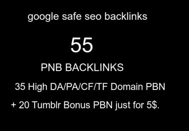 do 55 high google safe tf cf da pa homepage pbn backlinks permanent