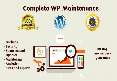 maintain and secure your wordpress website