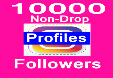 10000+Active Social Media profile followers in 1-2 H