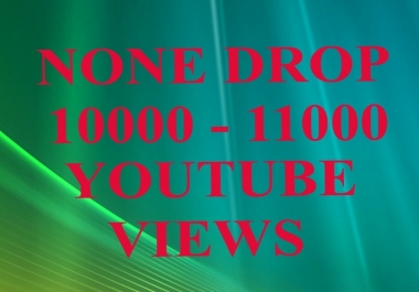 none drop 10000 - 11000 video views fast delivery