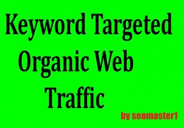 Drive 4,000 USA Google Keyword Targeted ORGANIC Traffic