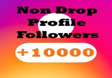 Instant 10000+ Followers to your Profile within 6-12 hours Non Drop