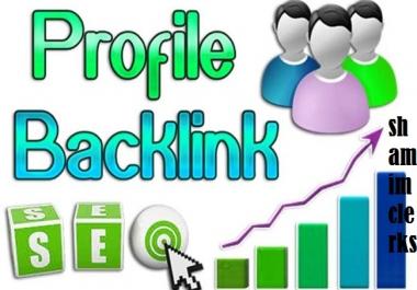 Get 10 high quality profile backlink