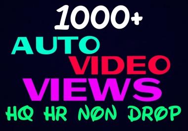 Provide 1000+ HQ and Non Drop Social auto Service Professionally