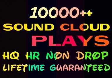 Provide 10000+ HQ and Non Drop Social Service Professionally