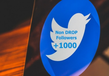 Instant 1000+ Non Drop Social Followers to Your Profile 1-2hours