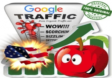 USA Search Traffic from Google.com for 30 days