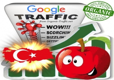 Turkish Search Traffic from Google.com.tr for 30 days