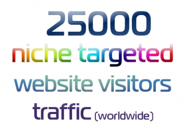 Express 25000 Niche Targeted Website Visitors Traffic
