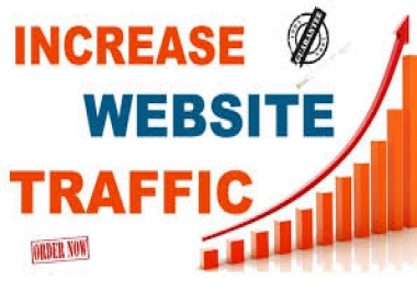 4000 real web traffic to your website