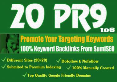 20 Keyword Backlinks from Authority Domain, Skyrocket Your Ranking