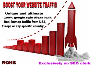 Get 10000 real human Traffic to your Website/blogs for 30 days