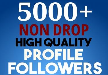 Start Instant 5000 Profile Followers HQ NON DROP SEO Service
