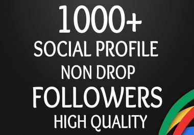 Start Instant 1000+ Followers High Quality Organic SEO Package