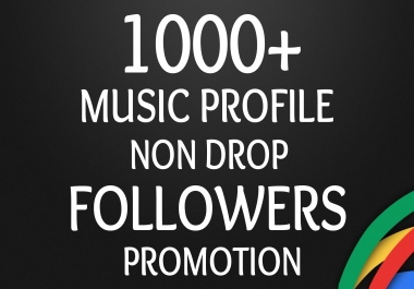 Start Instant 1000+ Music Profile Followers For BEST ORGANIC SEO PACKEGE