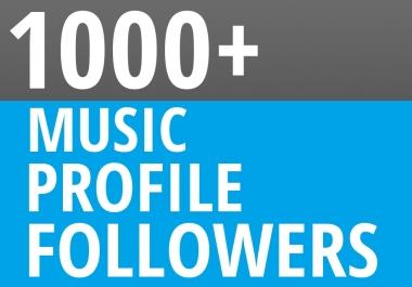 Start Instant 1000+ Music Profile Followers For BEST ORGANIC SEO PACKEGE