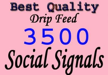 drip feed 3500 fundamental social signals