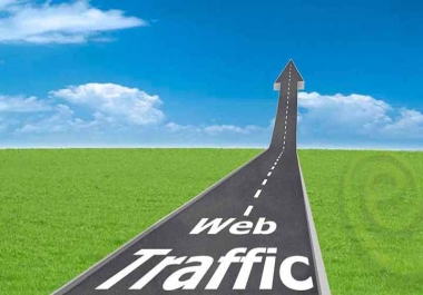 drive 1000 daily HIGH QUALITY traffic for 10 days