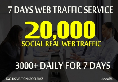 DRIVE 20,000+ REAL HUMAN TRAFFIC to your website or blog for 7 days