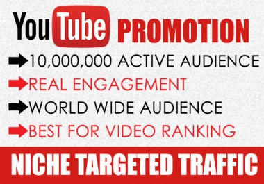 Give you 3000 REAL You-Tube Video Views & 30 likes BONUS