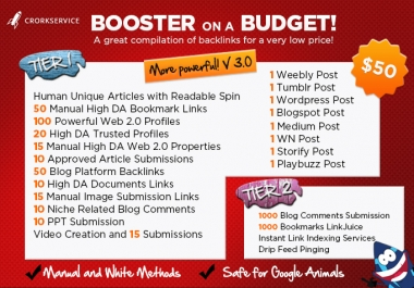 'Custom offer for my client robbyray- Budget Booster Package