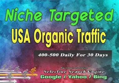 Send USA Niche Targeted Organic Traffic