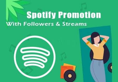 provide three thousand streams & one fifty fans
