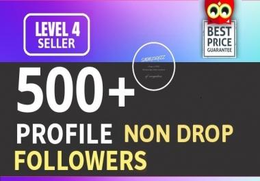 Add 500+ High Quality Fast Profile Followers NON DROP