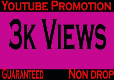 Guaranteed and safe 2500-3000 YouTube views