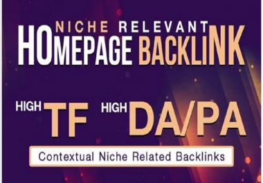 5 High DA Homepage PBN. Niche Relevant Blogs.
