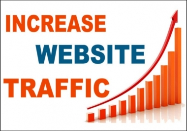 1000 Real Website Traffic within 24 hours