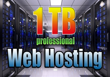 To Provide 1tb Professional cPanel USA Web Hosting + Support